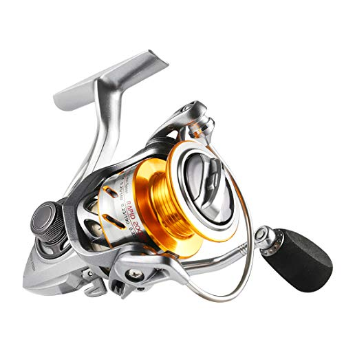 SeaKnight Rapid Saltwater Spinning Reel, 6.2:1 High Speed, Max Drag 33Lbs, Smooth Fresh and Saltwater Fishing Reel ()