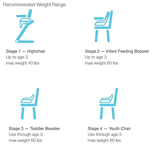 Graco Blossom 4-in-1 Convertible High Chair Seating System, Sapphire by Graco (Image #11)