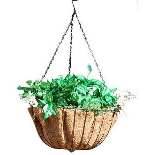 GCDAustram 31706 Hyde Park Hanging Planter 20quot Green