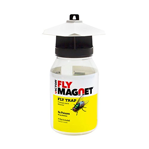 Victor M380 Fly Magnet Reusable Trap with Bait (Best Natural Black Fly Repellent)