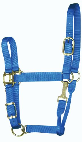 Hamilton 11-16 1 Nylon Adjustable Quality Horse Halter with Snap, Large, for Horses 1100 to 1600 lbs, ()