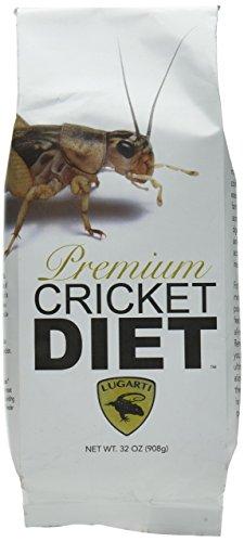Pcd Cricket - 3