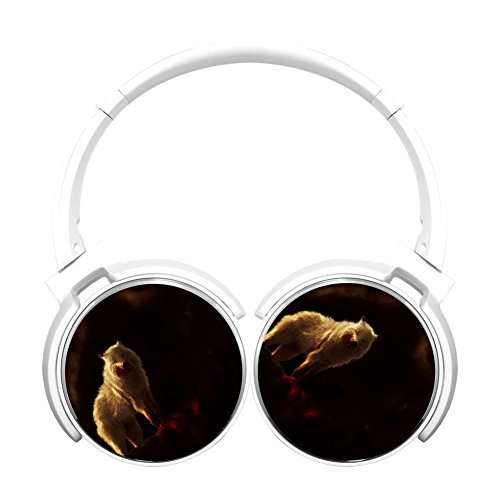 Gamer Chart Blood Dark Wolf Stereo Wireless Headphones With Microphone On-Ear Foldable Portable Music Headsets For Cellphones Laptop Tablet Tv Headphoneswhite