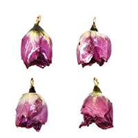 Monrocco 4 Pcs Natural Dried Rose Flower Charms with Liquid Resin Covered Epoxy Resin Dried Flower Pendants for Jewelry Making