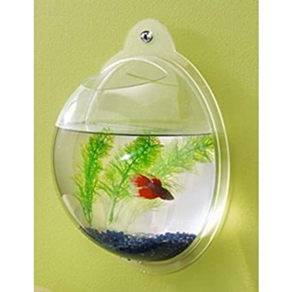 Amazon Fish Bubbles Wall Mounted Acrylic Fish Bowl Wall