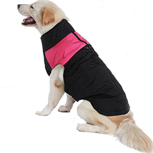 Treat Me Nylon Fabric Dog Winter Coat Thicken Cotton Waterproof Zipper Pet Coat for Medium and Large Dog,Outdoor Skiing(M,Rose Red)