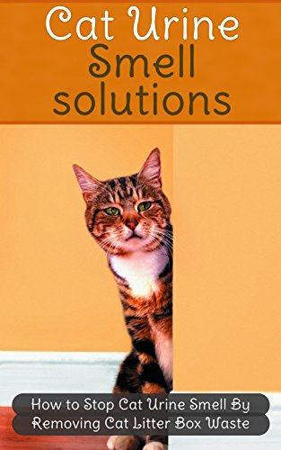How To Get Rid Of Cat Urine Smell >> Cat Urine Smell Solutions How To Stop Cat Urine Smell By