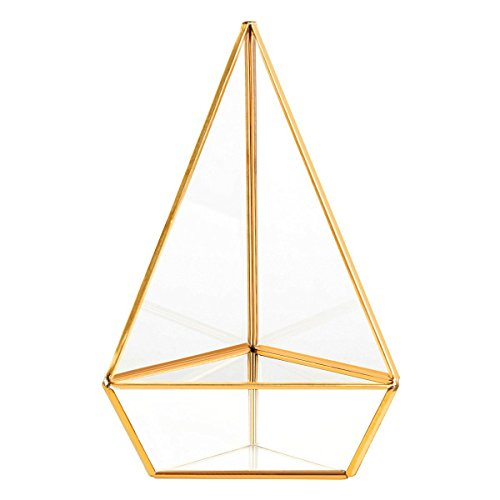 Homeideas glod geometric terrarium modern clear glass