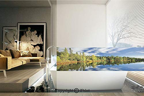 Decorative Privacy Window Film/Elegant Forest Reflecting on Calm Lake Shore at North Canada Universe Art Print/No-Glue Self Static Cling for Home Bedroom Bathroom Kitchen Office Decor Green Blue White - North Marble Shore