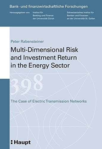 Multi-Dimensional Risk and Investment Return in the Energy Sector: The Case of Electric Transmission Networks (Bank- und finanzwirtschaftliche Forschungen)