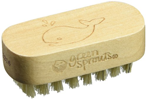 Gs Nail Brush Size Ea Gs Nail (Best Green Sprouts Nail Brushes)