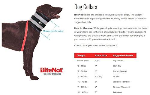 BiteNot-Collar-5W-x-21L