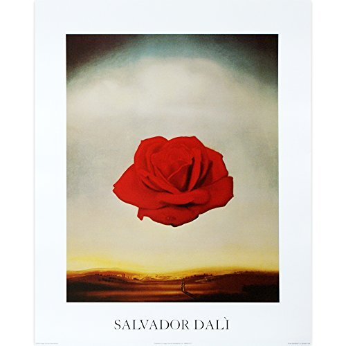 (Meditative Rose by Salvador Dali. Fine Art Print Poster 16 x 20)