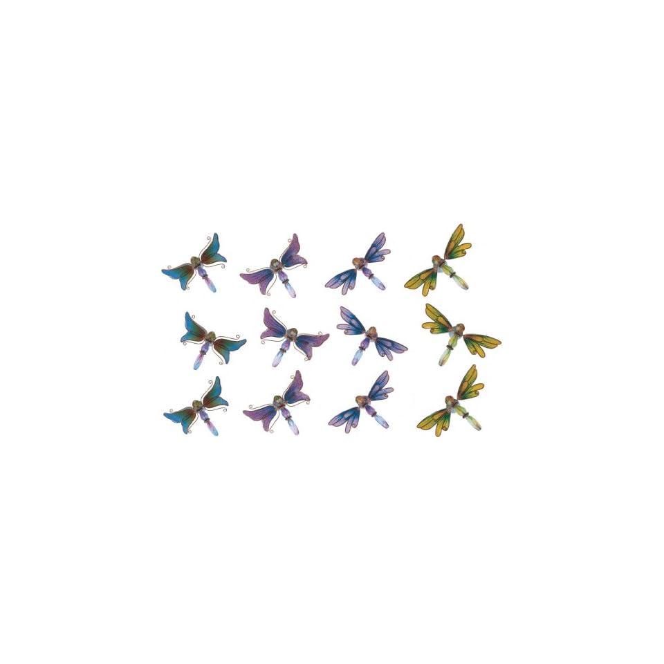 Refrigerator Fridge Magnet Collection Dragonfly Set Of 12