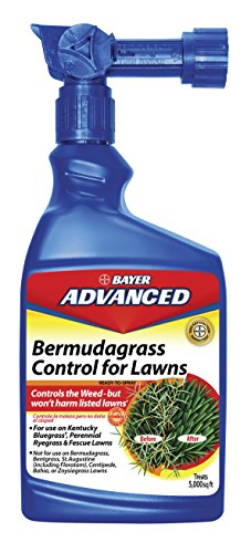 Bayer Grass Weed Killer (Bayer Advanced 704100 Bermudagrass Control for Lawns Ready-To-Spray, 32-Ounce)