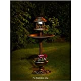NEW 3 in 1 Bird Bath with Solar Light and Planter Garden Summer Birds Water