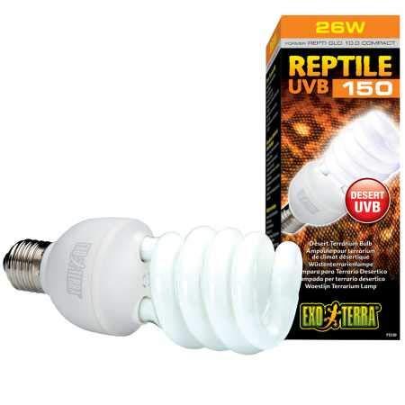 Bulbs For Reptiles