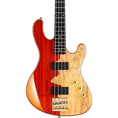 - Jeff Berlin Series Rithimic Bass Guitar