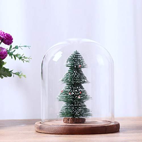 Amazon Forshop Glass Landscape Cover Flower Vase Terrarium Home