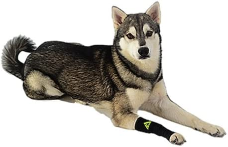 Canine-Dogs-Compression-Sleeve-Injury-Support-fatigue,-joint,-tendon-and-ligament-laxity