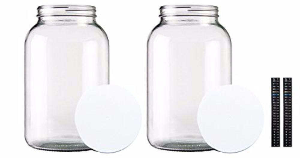 Home Brew Ohio One gallon Glass Jar with Lid & Dual Scale Thermometer-Set of 2