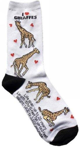 Giraffe Gifts Amazon Com