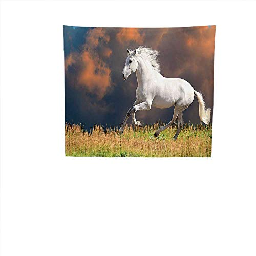 rative (19W x 19W Inch Wall Hanging Bedspread Multi Purpose Tapestries Animal Decor Andalusian Horse a Majestic Dust Cloud Background Strong Desires Sign Photo White Orange Green. ()