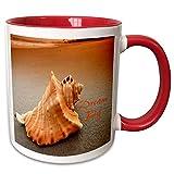 3dRose mug_305865_10