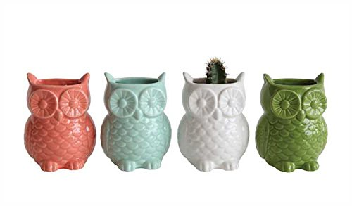 Magnetic Stoneware Owl Vases - 3 Sets of 4