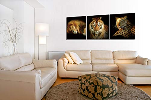 Chic Home Decor Wild Safari 3 Piece Set Wrapped Canvas Wall Art Gigclee Print Modern Multi Color Painting Animal Kingdom Rulers Lion Tiger Leopard Stretched Ready to Hang, 16
