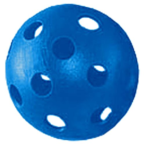 Martin Sports Plastic Baseballs (Pack Of 12) Style : WB3-BLUE Size : OS by Martin Sports