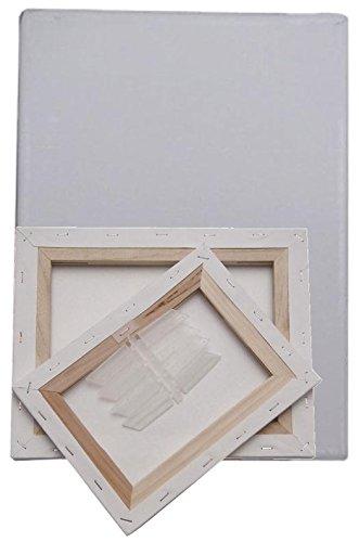 4 x Lienzo sobre bastidor 12 x 18 cm blanco pintor Lienzo Artista ...