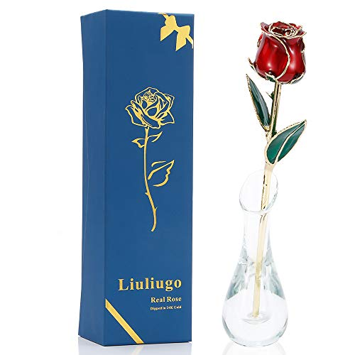 LiuLiugo Gifts for her,24K Gold Rose Made from Real Fresh Long Stem Rose Flower with Transparent vase for Valentine's Day,Mother's Day,Christmas Day, Anniversary, Birthday (E.Red)