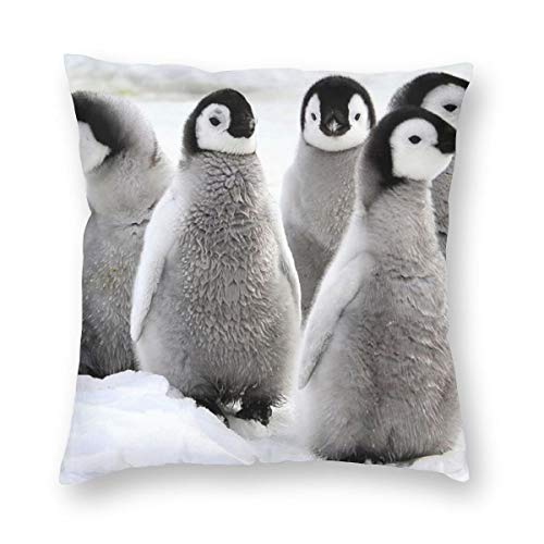 Bonsai Tree Penguin Baby Animal Fall Throw Pillow Covers for Couch Bed Sofa, Cute Pillow Cases Decorative Pillowcase Covers with (Club Penguin Halloween Floor 12)