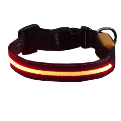 Sassy Dog Wear 11-20-Inch Single-Line Led Flashing Dog Collar,