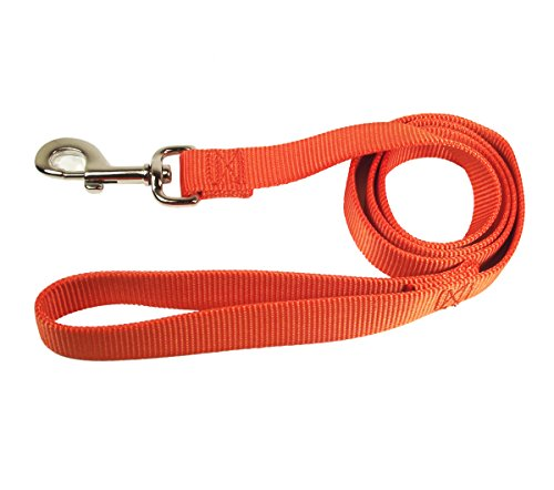 Image of Hamilton Single Thick Nylon Dog Lead, 1-Inch by 6-Feet, Mango Orange