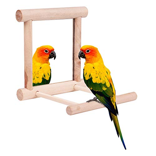 Toy Parrot Mirror - HAPPTYTOY Bird Toy for Parrot Parakeets Conures Cockatiels Cage Swing Wooden Mirror Fun Play Toy for Birds