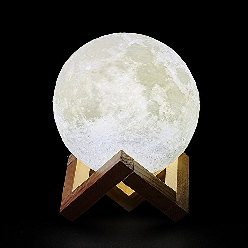 Moon Lamp, 3D Print LED Moon Light Rechargable Dimmable Warm Light & White Light, Home Decorative Lights by S NMT