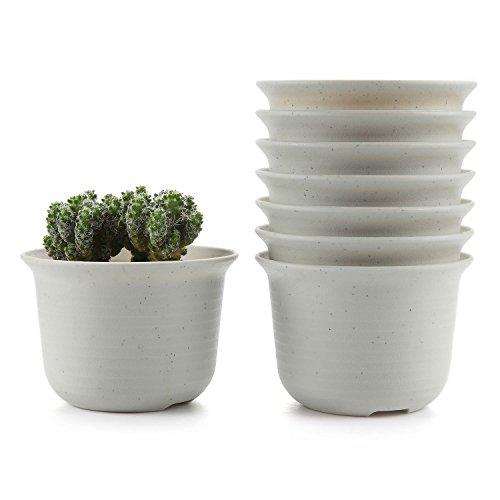 T4U 5 Inch Plastic Round Succulent Plant Pot/Cactus Plant Pot Flower Pot/Container/Planter Package 1 Pack of 8