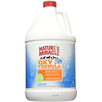 Amazon Com Nature S Miracle Oxy Stain And Odor Remover