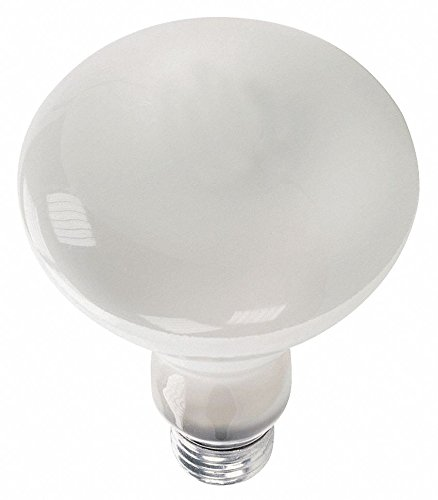 - GE LIGHTING 65W, BR30 Incandescent Light Bulb