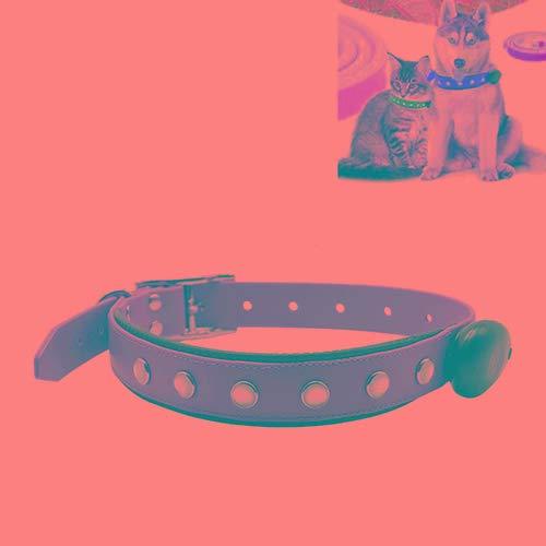 Animale domestico Bella abbastanza bella moda confortevole Collare regolabile per cani, collare, collare, collare, collare, collare, collare, collare, collare, collare, collare, collare, collare, coll