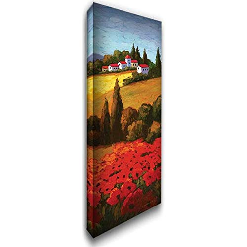 Tuscan Poppies Panel II 20x60 Extra Large Gallery Wrapped Stretched Canvas Art by Parrocel