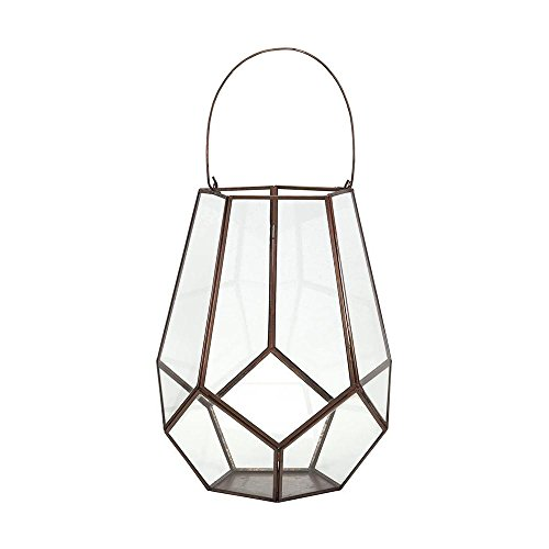 Home Decorators Collection Downing 12 in. x 15 in. Iron Terrarium by Home Decorators Collection