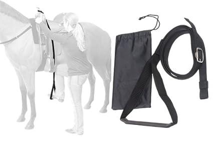 Amazon.com   Tough-1 Stirrup Mounting Aid   Horse Care Equipment ... b5cd0385e69a0