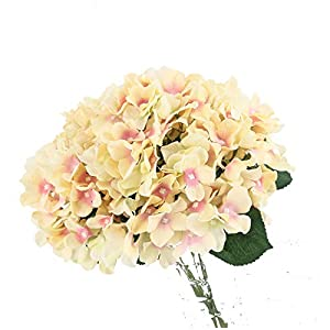Charmly 7 Big Head Artificial Hydrangea Flowers Fake Silk Bouquet Flower for Home Hotel Wedding Party Garden Floral Decor Approx 17'' high Champagne 9