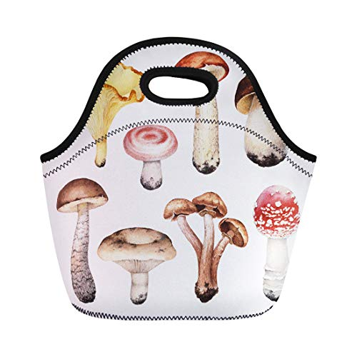 Semtomn Neoprene Lunch Tote Bag Orange Food Watercolor of Mushrooms Forest Autumn Porcini Agaric Reusable Cooler Bags Insulated Thermal Picnic Handbag for Travel,School,Outdoors,Work