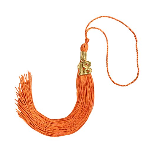 Orange Tassel (GraduationForYou Graduation Tassel with 19 Year Charm(Orange) )