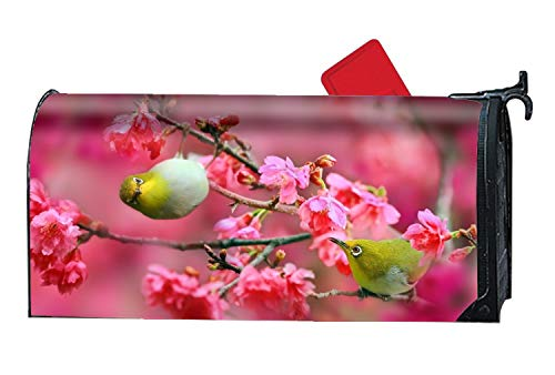 Bird Personalized Mailbox Cover Magnetic Spring Summer Fall Winter for Standard Mailboxes (Cover Mailbox Personalized)