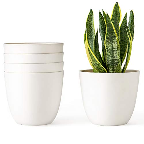 - Mkono 6.5 Inch Plastic Planters Indoor Set of 5 Flower Plant Pots Modern Decorative Gardening Pot with Drainage for All House Plants, Flowers, Herbs, African Violets, Foliage Plants, Cream White